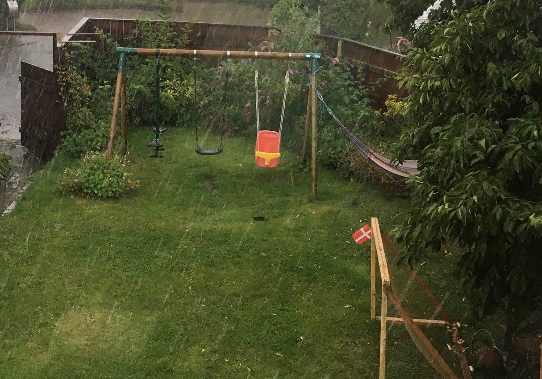 Den etablerede have